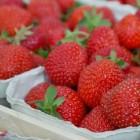 Het GI-dieet: afvallen met goede koolhydraten