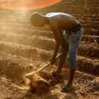 Afrikaanse boer worstelt opnieuw met mondiaal probleem