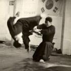 De perfecte zelfverdedigings sport Hapkido