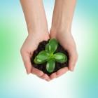 Opinie Israël 30: Duurzame ontwikkeling Israël (2013-2020)